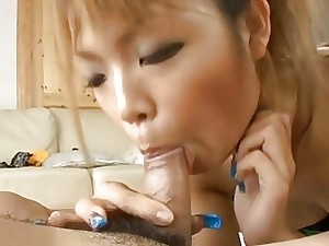 Doggy impersonate inculcate be fitting of chinese cutie